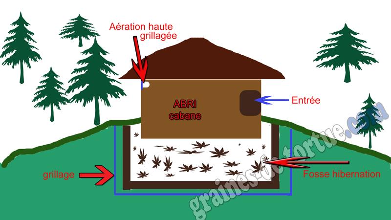 Maison pour tortue de terre ventana blog - Construire une maison en terre ...