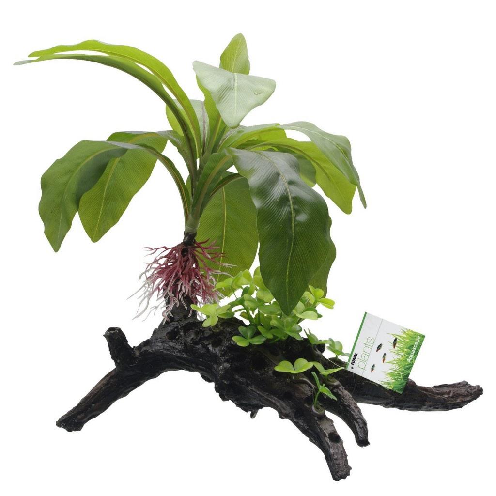 Branche aquarium fashion designs - Kit terrarium plante ...