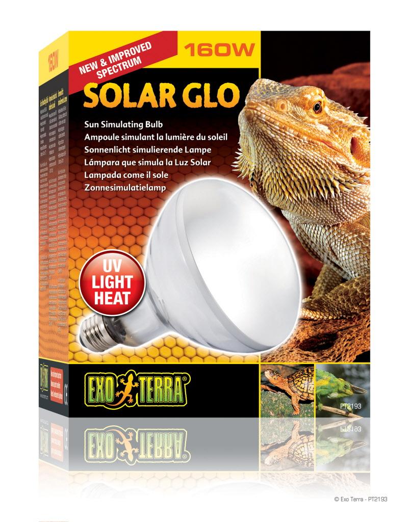 Lampe Uvb Solar Glo Pour Tortues Et Reptiles 160 Watt Par Graines De